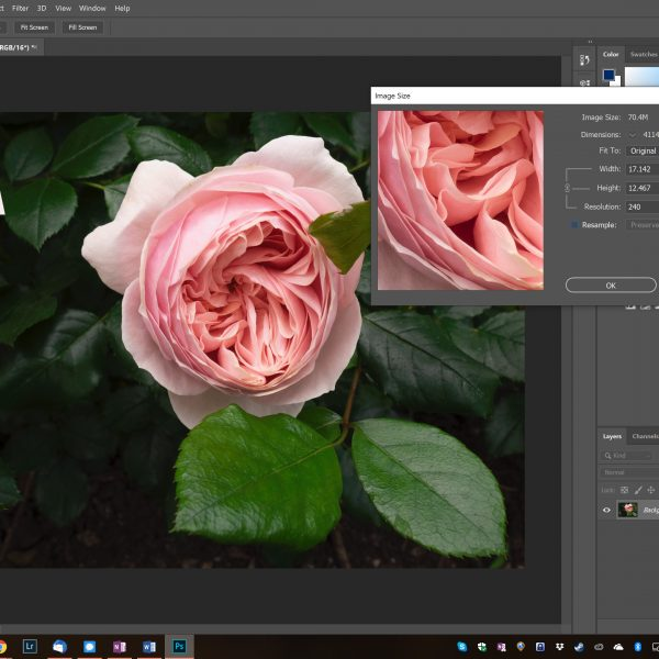 Resolution & PPI vs DPI: Resizing Your Images for Display Demystified